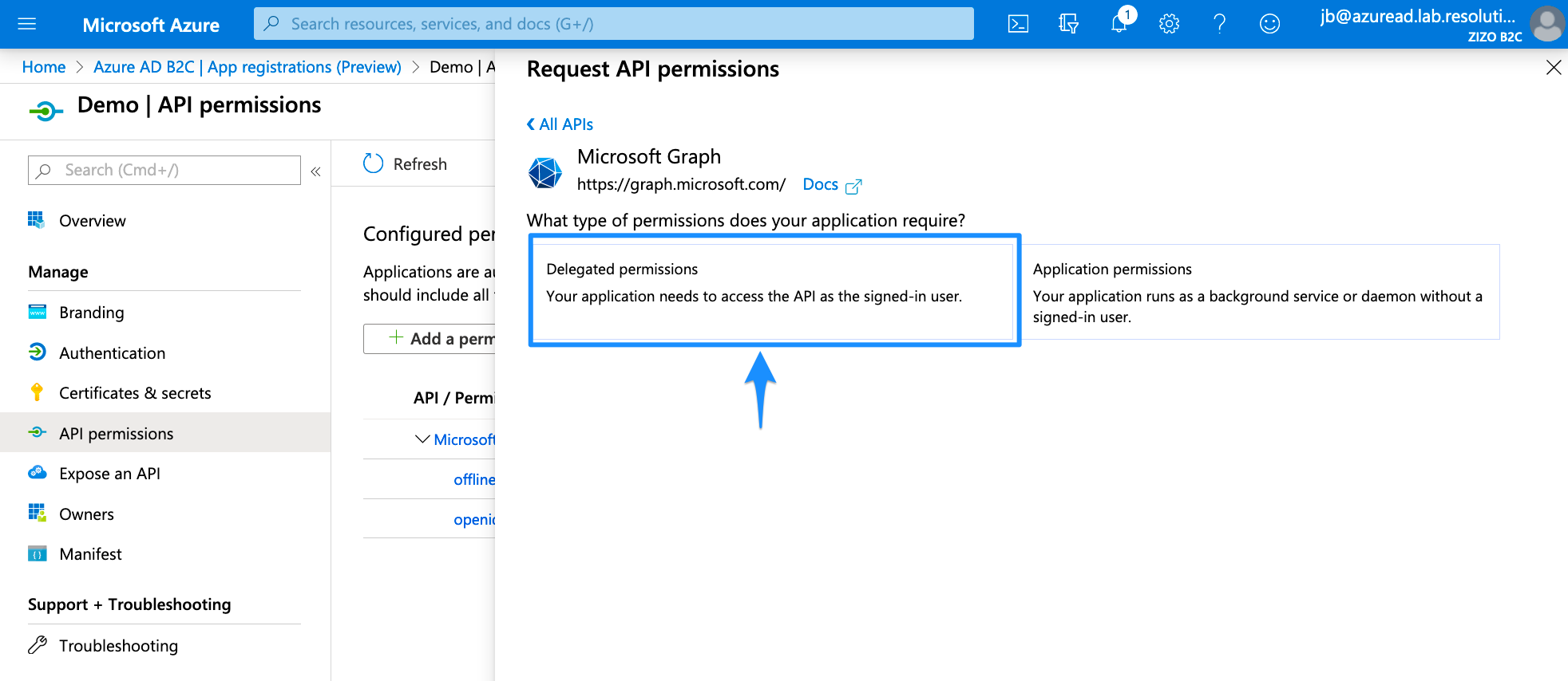 Delegated Permissions Azure AD B2C