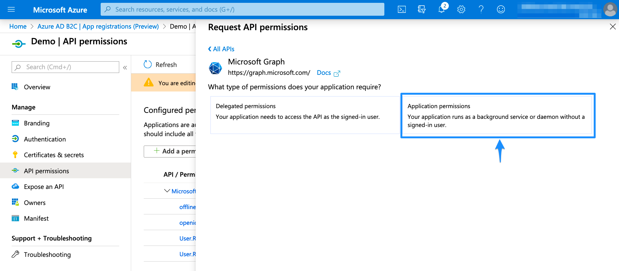 Application permissions Azure AD B2c